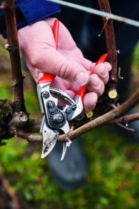 FELCO 14 Kompakt Garten- Rebschere für kleine Hände