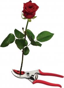 FELCO 4CH Blumen-Präsentierschere